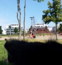 Der erste Spaziergang im Stadtteil