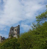 Ausflug zum Drachenfels