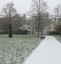 Der erste Schnee in Köln