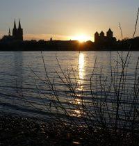 Nach Feierabend wieder in den Rheinpark