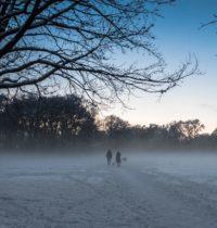 Schneenebel zur blauen Stunde